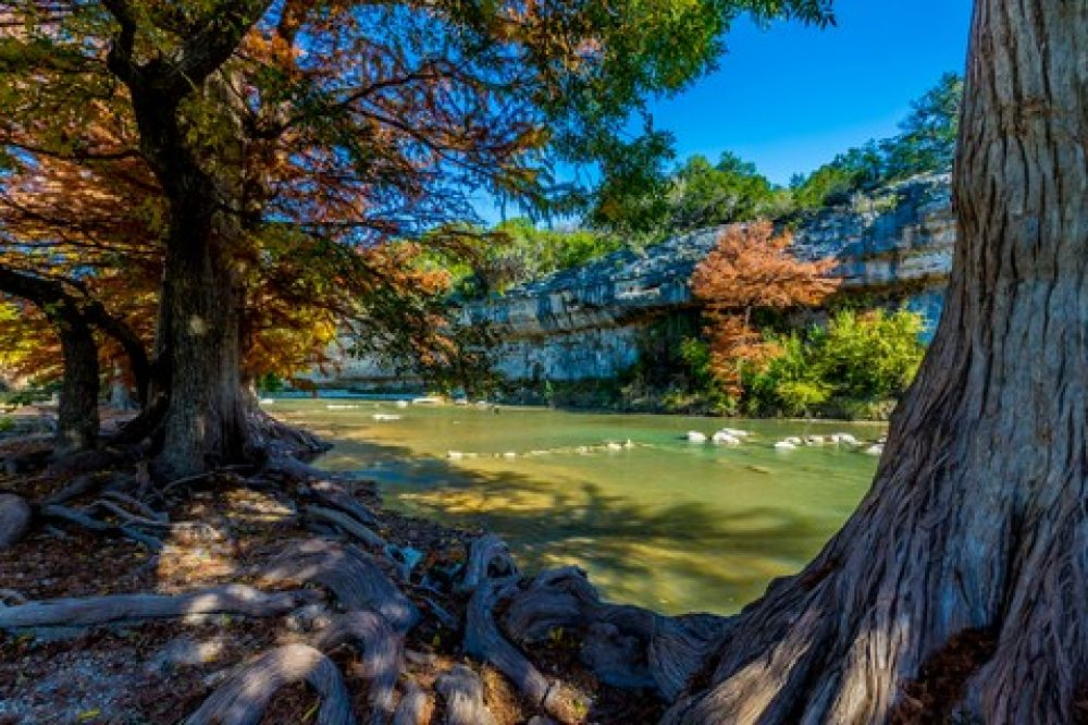 Guadalupe River State Park Spring Branch Tx Texas Hill